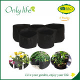 Onlylife glaubte haltbarem am meisten benutztem Gemüsegarten-Pflanzer, Beutel Dia35X28cm zu wachsen
