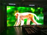실내 이용된 250*250mm P3.91 RGB LED 모듈 전시