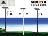 Lumière solaire approuvée de jardin de la certification 15W LED de la CE