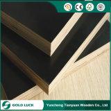 (O melhor preço) 15mm, madeira compensada do molde de 18mm/madeira compensada marinha