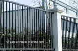 Première clôture galvanisée résidentielle industrielle simple de produit plat