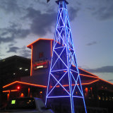 건물 훈장을%s 다채로운 LED 네온 코드 빛