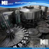 Completare il progetto imbottigliante minerale dell'acqua potabile