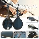 Оптовый Mandolin OEM/ODM приемлемо от фабрики Aiersi