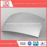 Double panneau architectural en métal courbé pour la Décoration de mur rideau