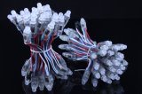 광고를 위한 공장 직매 50PCS/String 풀 컬러 DC5/12V Ws2811 RGB 12mm 화소 LED