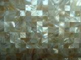 Мозаика раковины 15*15mm свежей воды цвета природы
