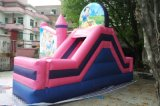 Vergnügungspark-Prinzessin Carriage Inflatable Bouncer mit Wasser-Plättchen