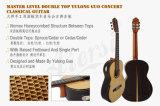 Твердые Master категории концерт классической гитаре с Yulong Гуо (GC03A)