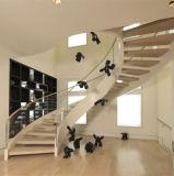 Les escaliers préfabriqués de spirale d'acier inoxydable autoguident les escaliers incurvés pour d'intérieur
