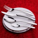 Jeu réglé d'acier inoxydable de vaisselle/couverts de jeux de dîner/de couverts prix raisonnables avec le traitement en plastique
