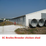 Estructura de acero de la casa de pollo de granja agrícola de los edificios