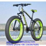 Bici barata de la nieve de la playa del carbón con el OEM