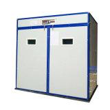 Macchina automatica poco costosa di Hatcher del termostato delle incubatrici del pulcino del pollame