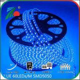Ce RoHS 10mm 5050 indicatore luminoso di striscia blu-chiaro dell'indicatore luminoso 110V della striscia di SMD