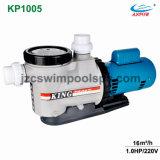 Heißer Verkaufs-endlose elektrische Swimmingpool-Pumpe mit Vor-Filter und Gleichstrom-Motor für Wasser-Zirkulation