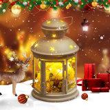 De met de hand gemaakte Natuurlijke Droge Gift van de Bloem voor Kerstmis