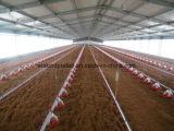 鉄骨構造のプレハブの養鶏場