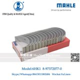 Mahle Brand 6HK1 Rolamento principal para Zx330 Zx360 Zx330-3