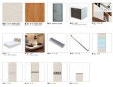 現代デザイン寝室の家具の木のワードローブ(V6-WS003)