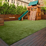 ثلاثة لون متحمّل يرتّب عشب لأنّ حديقة