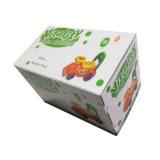 Haltbarer Farben-Drucken-Karton-Kasten (FT500)