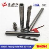Barra noiosa di anti vibrazione di CNC per gli utensili per il taglio