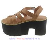 نساء يضخّ من [ستربّي] مجالد [إفا] خفاف [هي هيل] أحذية