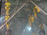 二重ガードの電気天井クレーンの小屋およびリモート・コントロール(QD)