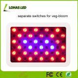 LED de 300W crescer a luz para a piscina hidroponia com efeito de plantas floridas Veg floração