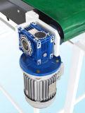Grapadora automática del rectángulo del cartón del motor servo