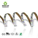 Faixa flexível de venda quente5050 SMD Piscina Piscina 60LEDs/M 300LEDs IP68 Impermeável Fita LED