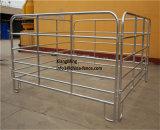 Для тяжелого режима работы оцинкованного металла скота фехтование крупного рогатого скота во дворе панелей