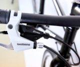 Bom preço Mountain Bike bicicletas de fitness (FX6.1-4)