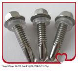 En acier inoxydable 304 316 rondelle à tête hexagonale de l'autonomie de la vis de forage DIN7504K