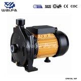 1HP Cpm158 zentrifugale einphasig-Wasser-Pumpe für Bewässerung