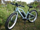 2016 Nouveau 36V élec Vélo adulte pour la vente