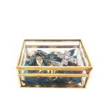 رف عادة معدن زجاجيّة مجوهرات تخزين يعبّئ صندوق