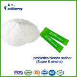 Kundenspezifische Probiotic Puder-Biokost-Ernährungsergänzungs-Zusätze