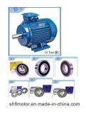 serie di Yej del motore elettrico 380V/50Hz