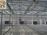 Placa de hueca de policarbonato para la Agricultura de invernadero