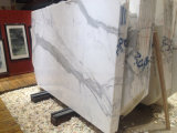 Полированные Белый Calcutta Белые мраморные плиты