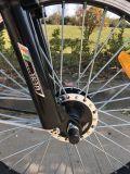 100km lange Reichweiten-Erwachsene E-Fahrrad elektrisches Fahrrad