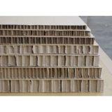 Acero de alta calidad de nido de abeja de papel para puertas