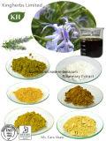 Кислота Rosmarinic; Кислота Ursolic, выдержка Carnosic кисловочная Розмари