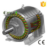 revolución por minuto inferior de 20kw 150rpm alternador sin cepillo de la CA de 3 fases, generador de imán permanente, dínamo de la eficacia alta, Aerogenerator magnético