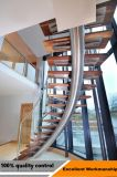 LED, die hölzernes Treppenhaus mit Glasgeländer-Edelstahl-Balustrade schwimmt