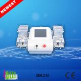 Laser de Lipo da remoção do Cellulite dos diodos da teoria 528 de Liposhape que Slimming o equipamento Br216
