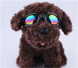 Glazen voor Honden, de Hond van de Zonnebril, Hond Eyewear