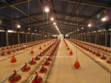 Matériel augmentant au sol de grilleur de poulet de ferme avicole